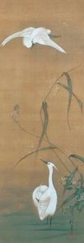 芦に白鷺一.jpg