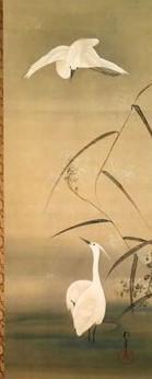 芦に白鷺二.jpg