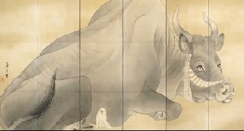 黒牛1.jpg